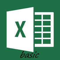 Excel 2013 Basic